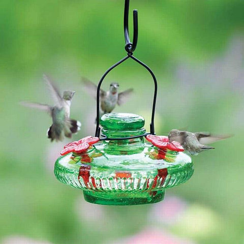 Bloom™ Hummingbird Feeder