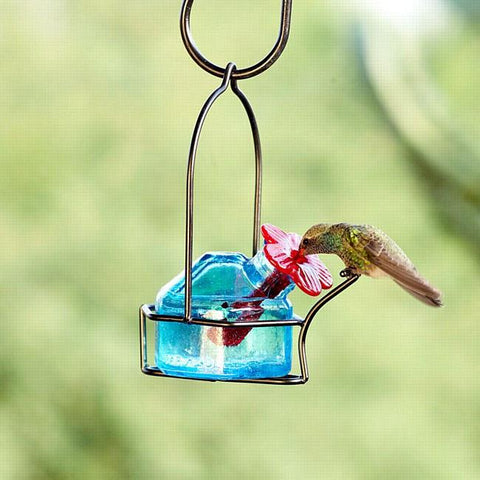 Lunch Pail Hummingbird Feeder - One Station