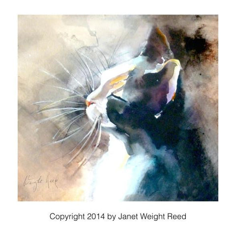 """Facing the Sun"" Cat Print by Janet Weight Reed"