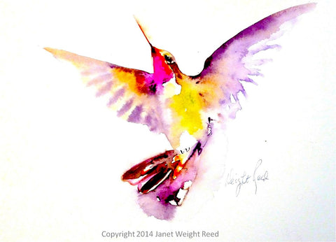 """Morning Light"" Hummingbird Print on Aluminum by Janet Weight Reed"