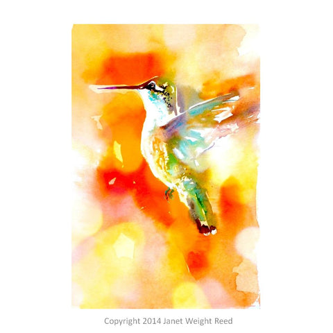 """Sunset Glory"" Hummingbird Print on Aluminum by Janet Weight Reed"
