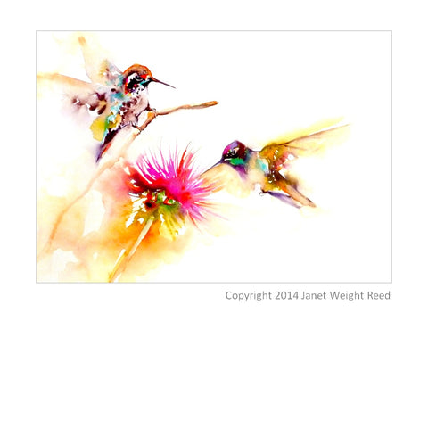 """Thistle for Two"" Hummingbird Print on Aluminum by Janet Weight Reed"