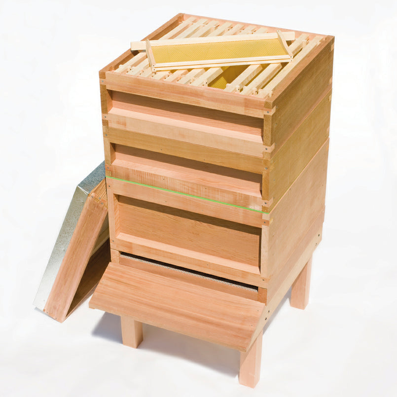 COMPLETE NATIONAL JUMBO CEDAR HIVE WITH 14x12 FRAMES