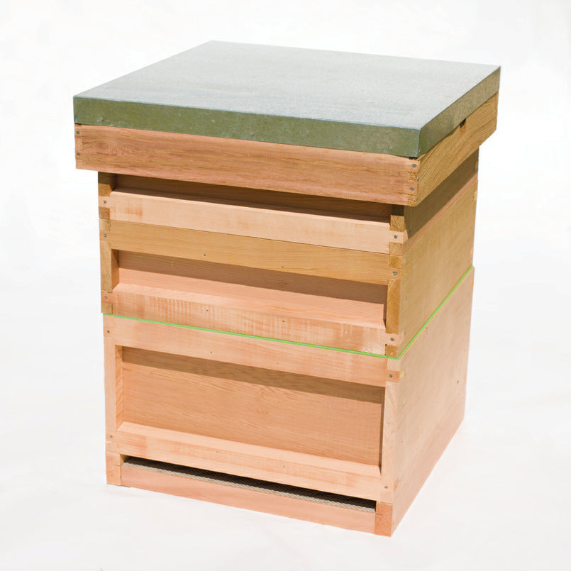 COMPLETE NATIONAL JUMBO CEDAR HIVE EMPTY