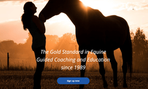 Equine Guided Coaching™: April 19-30, 2021