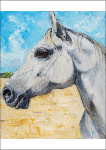 Jale - Contemporary Grey Horse Portrait by Linda Westall