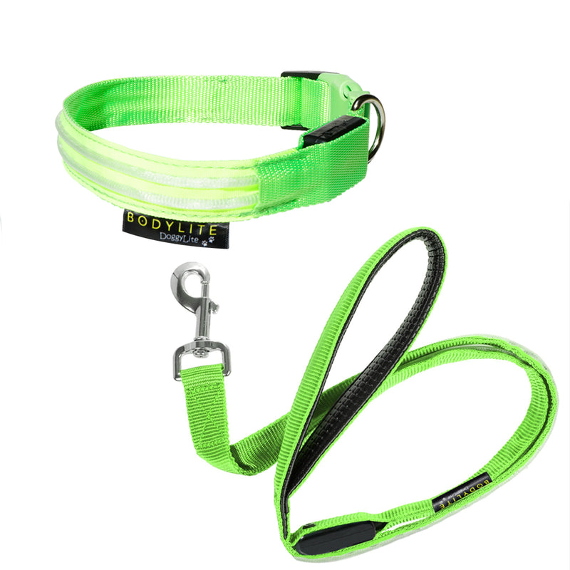 Lightweight, durable, and fully adjustable, this flexible LED-illuminated collar provides optimal visibility, ensuring you -- and vehicles -- can see your best friend at all times. The convenient, easy-to-use clips make fitting your dog with the collar a breeze. One quick click is all it takes to adjust the light between slow, steady, and rapid flashing modes, and you and your pup are ready to go.     The glow in the dark dog collar comes with a rechargeable battery that provides five hours of illumination