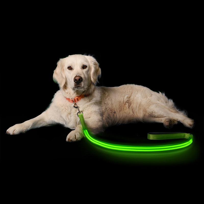 Doggylite USB Rechargeable LED Dog Leash - Bodylite®