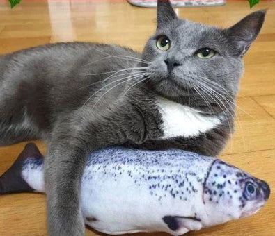Realistic Flopping Fish Toy for Cats