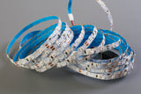 12v S Shape Blue color 2835 LED strip light