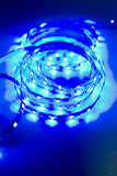 12v S Shape Blue color 2835 LED strip light - LED Updates