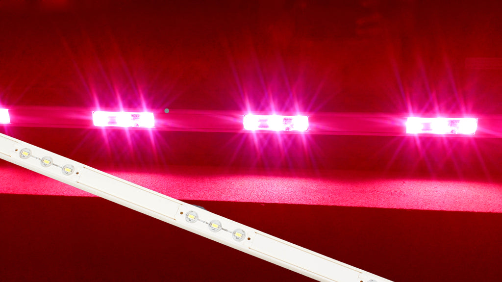 Storefront LED white track with Pink T5630 Super Bright LED Light