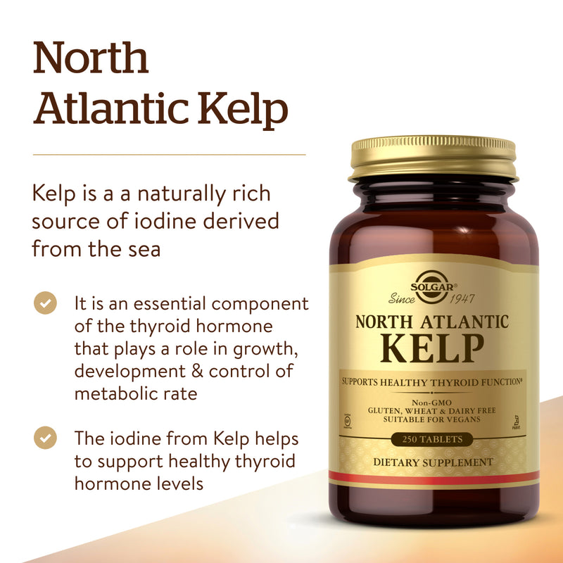 Solgar North Atlantic Kelp - 250 Tablets