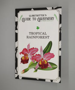 Globetrotter's Guide to Greenery: Tropical Rainforest