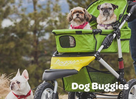 Dog Buggies