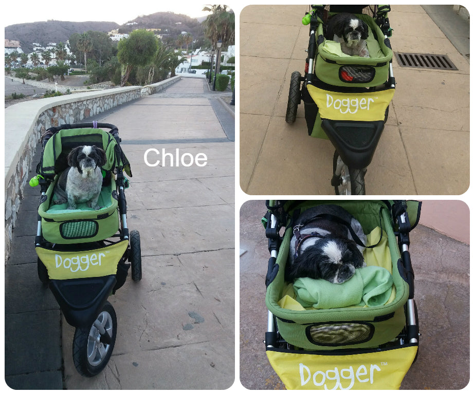 Dogger dog buggy