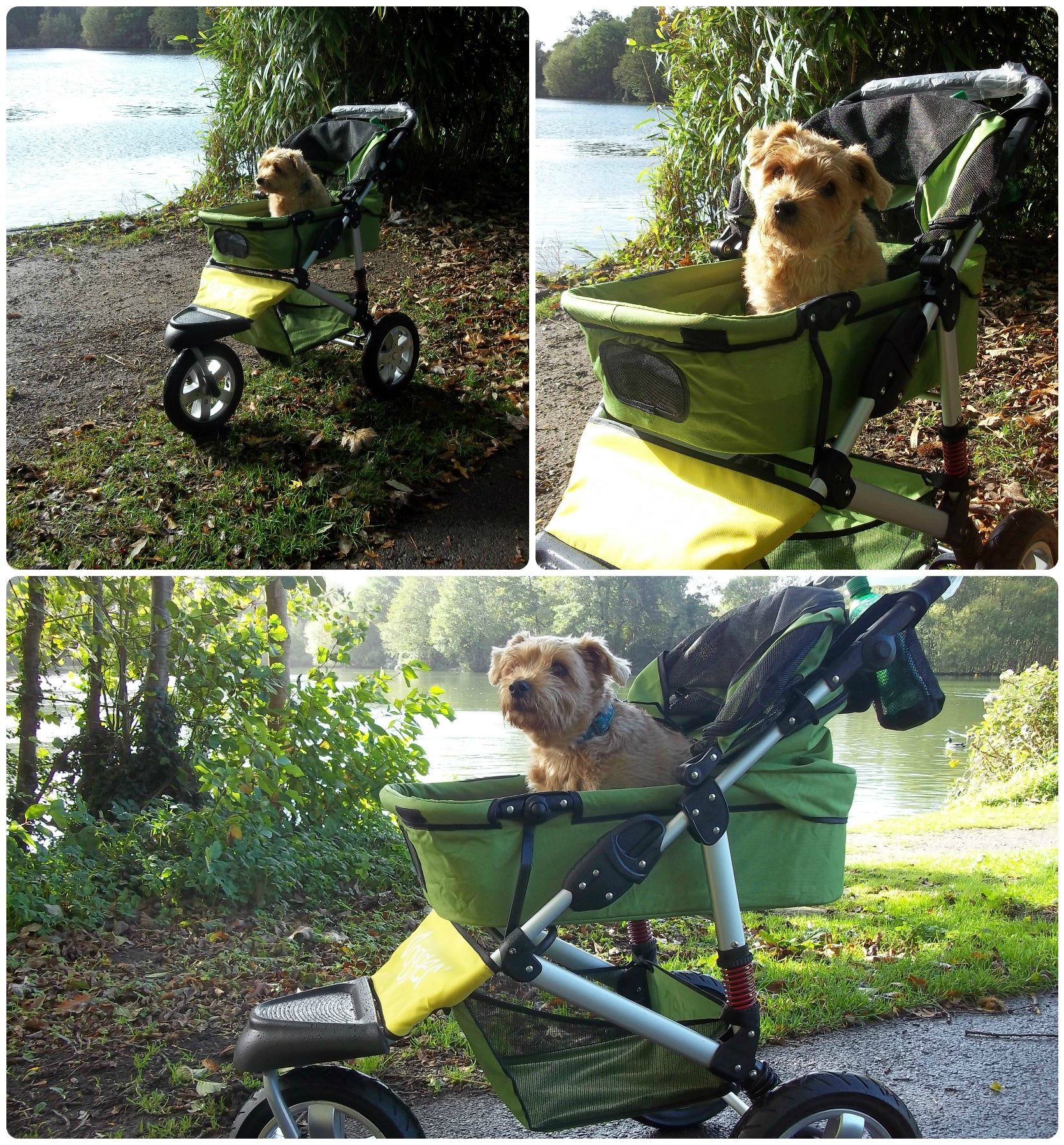 Dogger Pushchair
