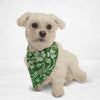 Clover Swirls Cat & Dog Bandana