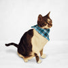 Blue Checkered Cat & Dog Bandana