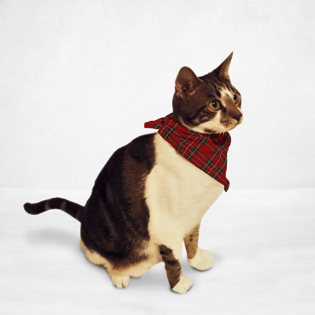 Red Plaid Cat & Dog Bandanna