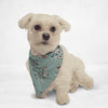 Soft White Flowers Cat & Dog Bandana