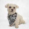 Animal Print Cat & Dog Bandana