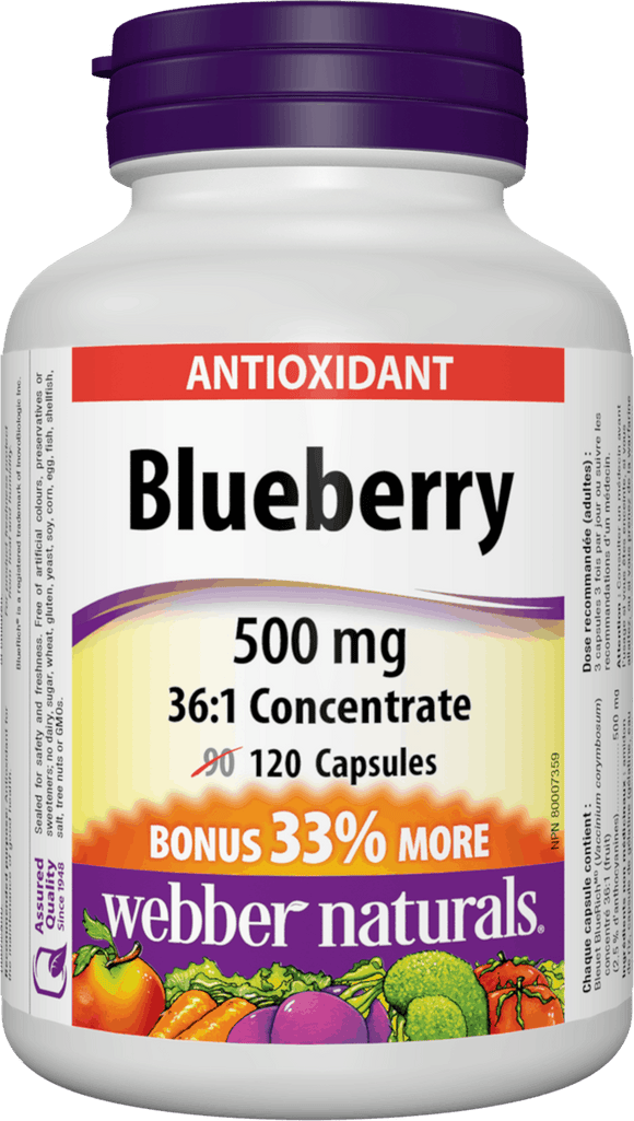 Webber Naturals Blueberry 36:1 Concentrate, 500 mg, 120 Capsules