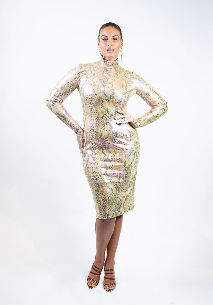 Iridescent Snake Print Long Sleeve Mock Neck Dress