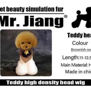 Mr Jiang Model Dog Head Set