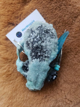 Load image into Gallery viewer, Baby Blue Crystal Raccoon Small Skull