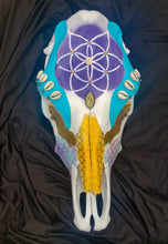 Load image into Gallery viewer, Flower of Life Mermaid Honey Comb Cow Skull - Home Decor
