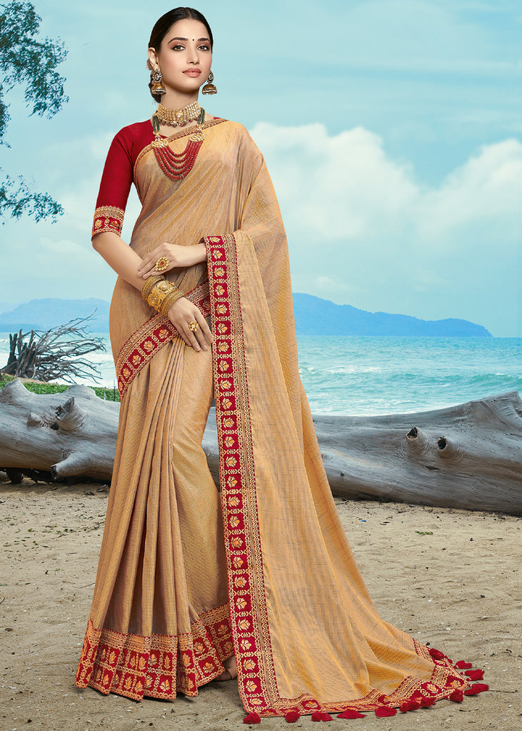KHAKHI BEIGE EMBROIDERED DESIGNER SAREE