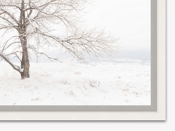 Crystal Bliss Print mounted in White Maple float frame