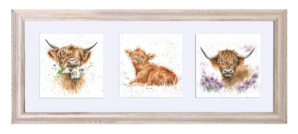 Wrendale Designs 'Trio of Highland Cows' Triple Print in a Mounted Frame - White Frame (61 x 26cm)