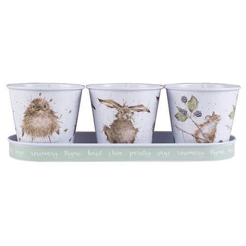 Wrendale Designs - Set of 3 Herb Pots and Tray (GR003) - Hothouse