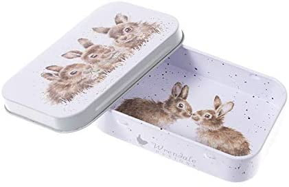 Wrendale Designs 'Daisy Chain' Rabbits Keepsake Mini Gift Tin - Hothouse