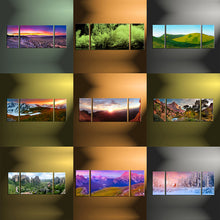 Load image into Gallery viewer, 3 Panel Split Canvas Prints