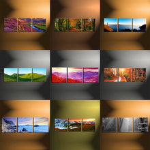 Load image into Gallery viewer, 4 Piece Split Canvas Prints Square