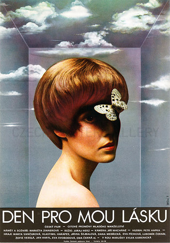Olga Polackova Vyletalova art of a woman, hairdo and butterfly - Czech Poster Gallery
