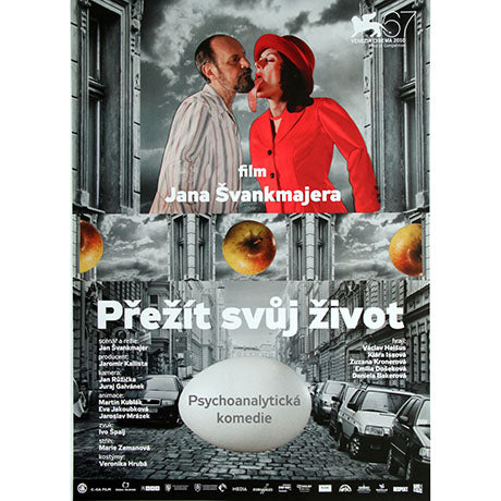SURVIVING LIFE Czech Poster