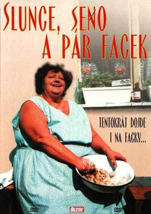 Sun, Hay and a Slap (Slunce, seno a par facek) Czech DVD with subtitles