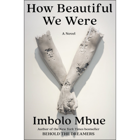 How Beautiful We Were: A Novel