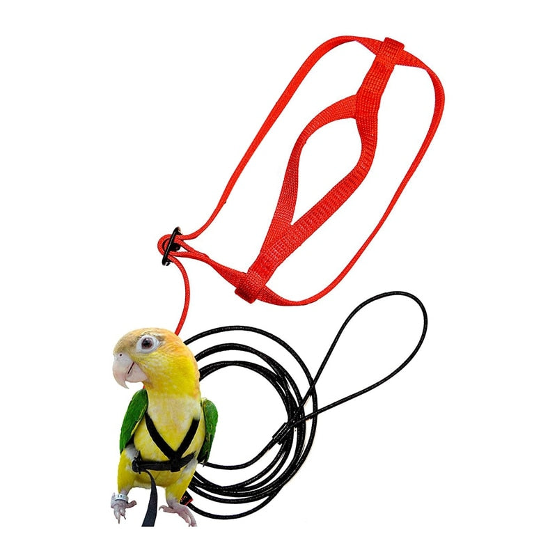 Hot Sale Pet Bird Harness and Leash,Adjustable Parrot Bird Harness Leash - Pet Anti-Bite Training Rope Outdoor Flying Harness an