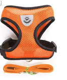 Orange Mesh Harness For Dog