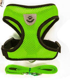 Green Mesh Harness For Dog