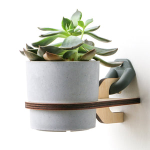 Gnarwall Plant Hanger - Single