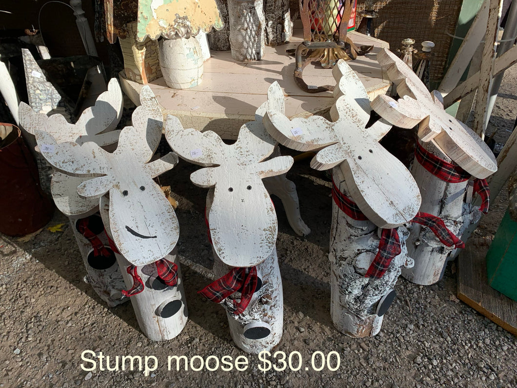 Moose stumps