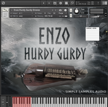 Load image into Gallery viewer, Enzo Puzzovio Hurdy Gurdy | Artist Series