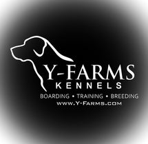 Y-Farms Pro Shop