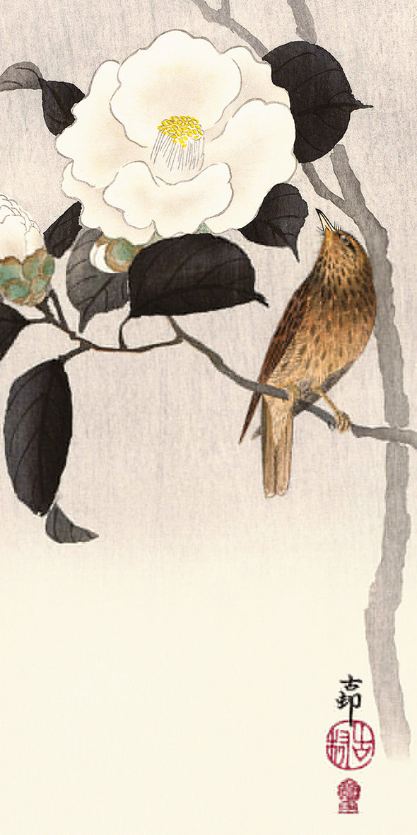 Pyramid International - Ohara Koson (Songbird and Flowering Camellia) Canvas Print